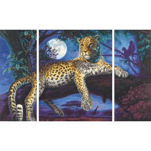 Schipper - 609260607 - Peinture aux numeros - Chasseur dans la nuit: le leopard - Cadre 50/80 (160611)