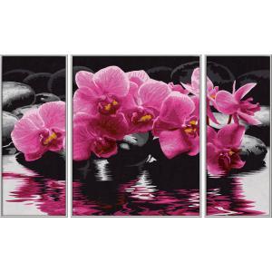 Schipper - 609260603 - Peinture aux numeros - Orchidees - Cadre 50 x 80 cm (175445)
