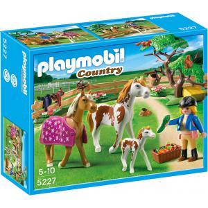 Playmobil - 5227 - Chevaux et enclos (176783)