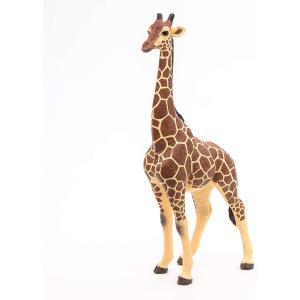 Papo - 50149 - Figurine Girafe mâle (177187)