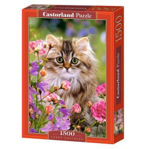 Castorland - 150991 - Puzzle 1500 pièces - Douceurs velue (207192)