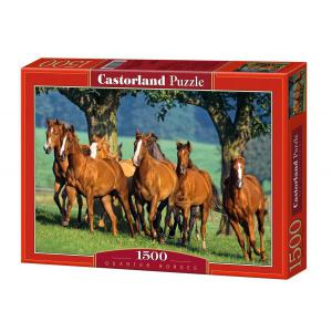 Castorland - 150748 - Puzzle 1500 pièces - Quarter Horses (207228)