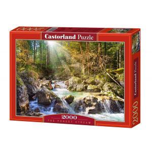 Castorland - 200382 - Puzzle 2000 pièces - Le ruisseau de la forêt (207272)