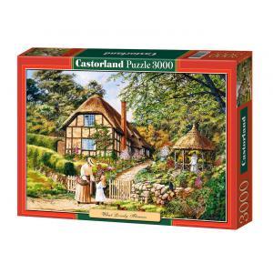 Castorland - 300358 - Puzzle 3000 pièces - Quelles belles fleurs ! (207290)