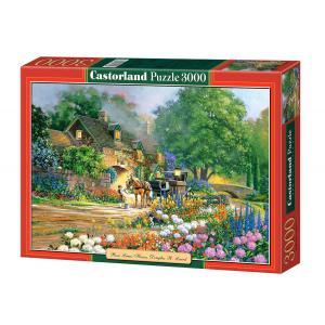 Castorland - 300235 - Puzzle 3000 pièces - Rose Lane House (207316)