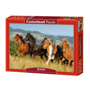 Castorland - 101993 - Puzzle 1000 pièces - Les Marcheurs aux Manches Longues (207356)