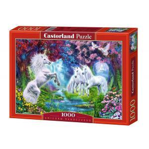 Castorland - 102440 - Puzzle 1000 pièces - Le Rendez-vous de la Licorne (207422)
