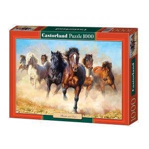 Castorland - 102891 - Puzzle 1000 pièces - Le tonnerre et la poussière (207508)