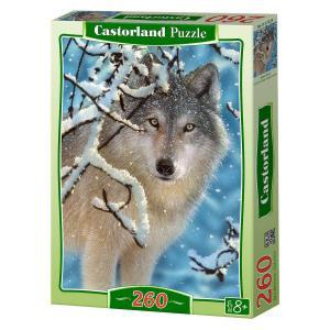 Castorland - 27224 - Puzzle 260 pièces - Silence Brisé (207660)