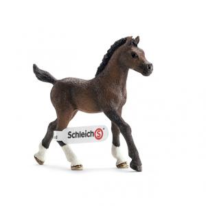 Schleich - 13762 - Figurine Poulain arabe 8 cm x 4 cm x 8 cm (212464)