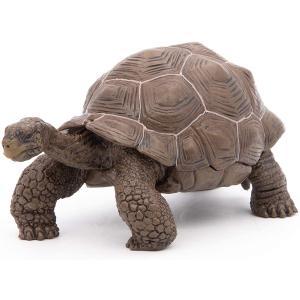 Papo - 50161 - Tortue des Galápagos - Dim. 11 cm x 6 cm x 5,3 cm (216252)