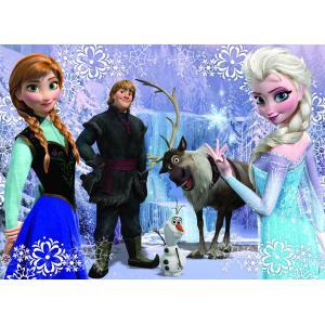 Nathan puzzles - 86719 - Puzzle 100 pièces - La reine des neiges / Frozen (219928)