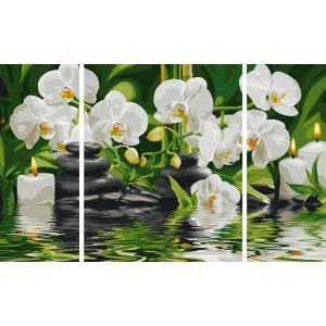 Schipper - 609260681 - Peinture aux numeros - Oasis de bien etre - Triptyque 50 x 80 cm (229686)
