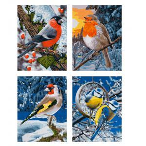 Schipper - 609340661 - Peinture aux numeros - Oiseaux d'hiver - Quattro 18 x 24 cm (229700)