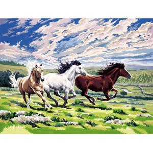 Mammut - 109026 - Peinture aux numéros - chevaux qui galopent (236496)