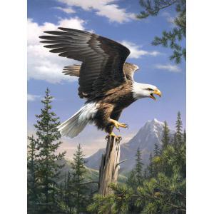 Mammut - 107003 - Peinture aux numéros - 23 x 34 x 2,5 cm - Collection artistes - aigle (236546)