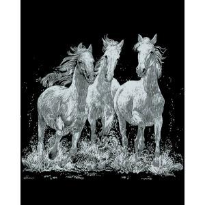 Mammut - 136005 - Carte à gratter argentée - 21 x 31 cm - chevaux sauvages (236746)