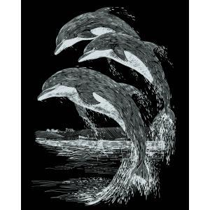 Mammut - 136013 - Carte à gratter argentée - 21 x 31 cm - dauphins (236752)
