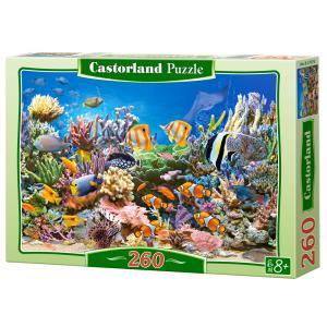 Castorland - 27279 - Puzzle 260 pièces - La couleur des océans (259440)