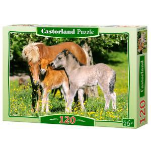 Castorland - 12909 - Puzzle 120 pièces - Poneys dans la prairie (259482)