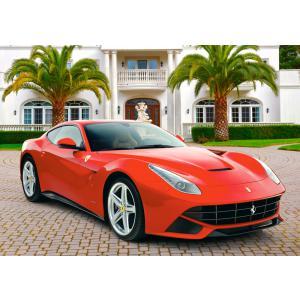 Castorland - 52080 - Puzzle 500 pièces - Ferrari F12 Berlinetta (259530)