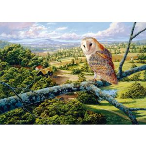 WentWorth - 592206_W - Puzzle 250 pièces - Barn Owl (266224)