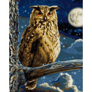 Schipper - 609240703 - Peinture aux numeros - Le grand duc - le maitre de la nuit (275620)
