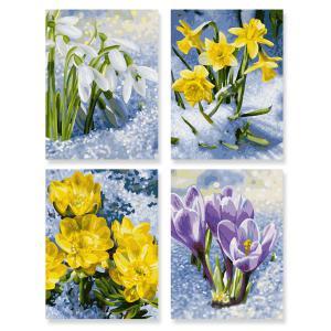 Schipper - 609340713 - Peinture aux numeros - quattro : le reveil du printemps 18 x 24 cm (275642)