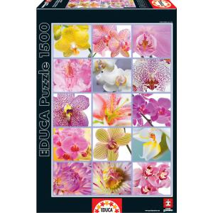 Educa - 16302 - Puzzle 1500 collage de fleurs (276570)