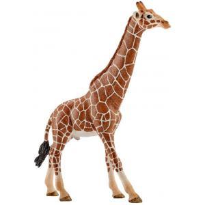 Schleich - 14749 - Figurine Girafe mâle 12,7 cm x 4,4 cm x 17 cm (303392)