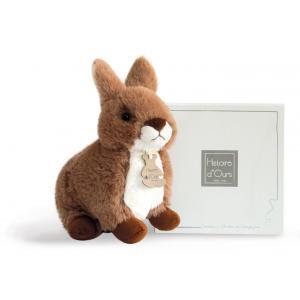 Histoire d'ours - HO2542 - Lapin gris - 20 cm - boîte cadeau (306082)