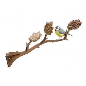 Graines de découverte - 430148 - Un oiseau à ma fenêtre (310518)