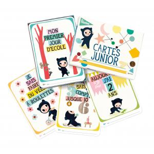 Milestone Cards - 106-000-010 - Cartes junior (310702)
