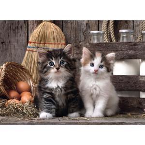 Clementoni - 39340 - Puzzle 1000 pièces  - Lovely Kittens (321500)