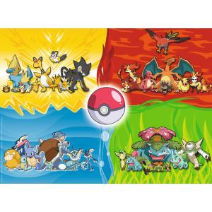 Pokemon - 10035 - Puzzle 150 pièces XXL - Les différents types de Pokémon (327836)