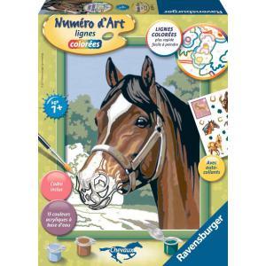 Ravensburger - 28597 - Numéro d'art Beau pur sang arabe- moyen format collection chevaux (341564)