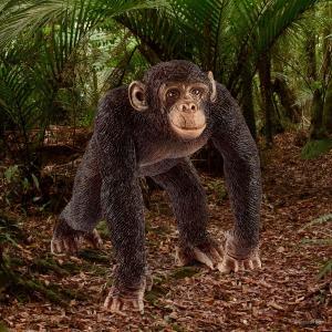 Schleich - 14817 - Figurine Chimpanzé mâle - Dimension : 6,5 cm x 5,2 cm x 5,7 cm (369568)