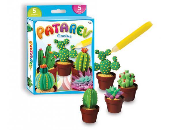 Patarev : mini cactus