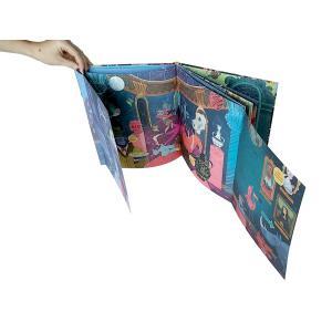 Sassi - 5049 - Livre La curieuse affaire du mammouth disparu - Editions Sassi (378780)
