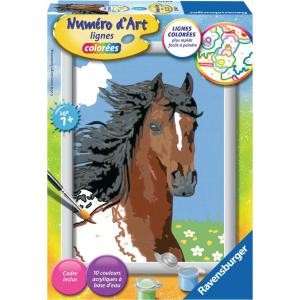 Ravensburger - 27849 - Numéro d'Art petit format lignes colorées - Jeu créatif - Portrait de cheval (380096)