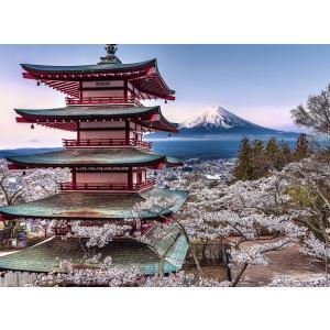 Nathan puzzles - 87154 - Puzzle 500 pièces - Nathan - Au cœur du Japon (380280)
