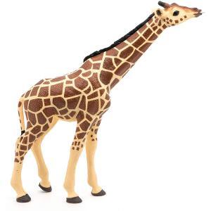 Papo - 50236 - Girafe tête levée - Dim. 15 cm x 3,7 cm x 16 cm (380508)