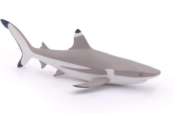 Requin à pointes noires - dim. 14,6 cm x 6,8 cm x 3,6 cm