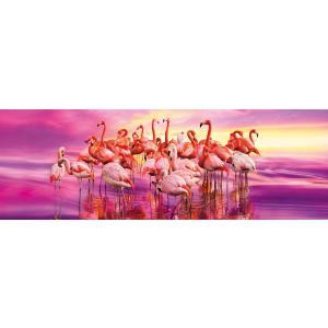 Clementoni - 39427 - Puzzles panorama 1000 pièces - Panorama - Flamingo Dance (381024)