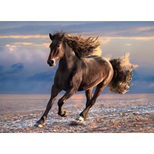 Clementoni - 39420 - Puzzle 1000 pièces  - Free Horse (Bx1) (381068)