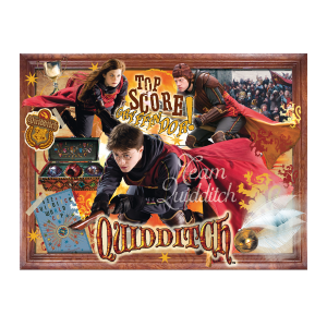 Winning moves - 2497 - Puzzle harry potter - 1000 pièces - quidditch (382978)