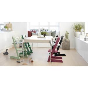 Stokke - BU135 - Pack chaise TRIPP TRAPP Vert tilleul avec Baby Set et tablette (392592)