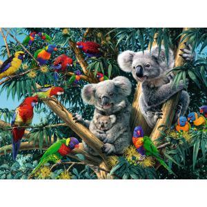 Ravensburger - 14826 - Puzzle 500 pièces - Koalas dans l'arbre (403910)