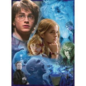 Harry Potter - 14821 - Puzzle 500 pièces - Harry Potter à Poudlard (403920)