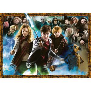 Harry Potter - 15171 - Puzzle 1000 pièces - Harry Potter et les sorciers (403974)